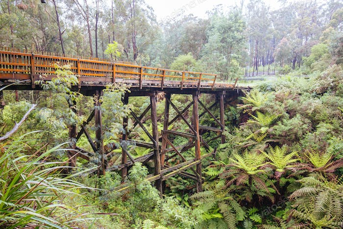 Noojee Trestle Bridge in Australia