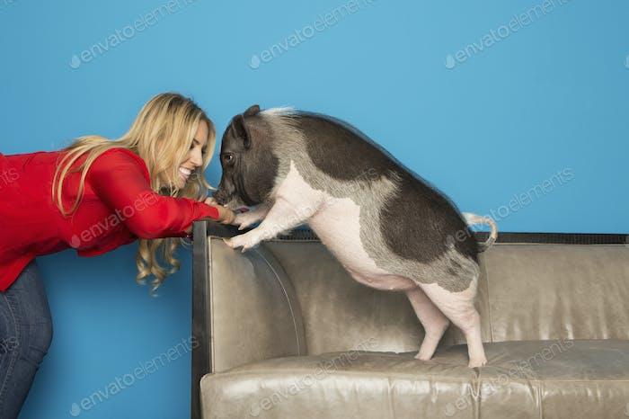 Eine Frau in einem roten Hemd mit ihrem Haustier domestizierte Topf bauchiges Schwein stehend auf einem Sofa.