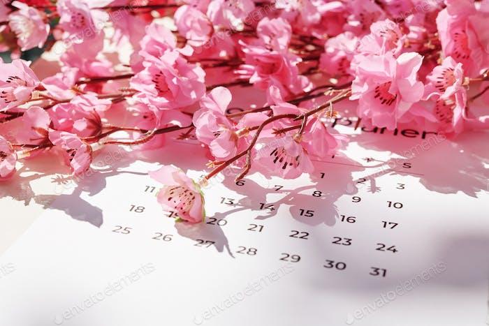 Concepto de festival de primavera