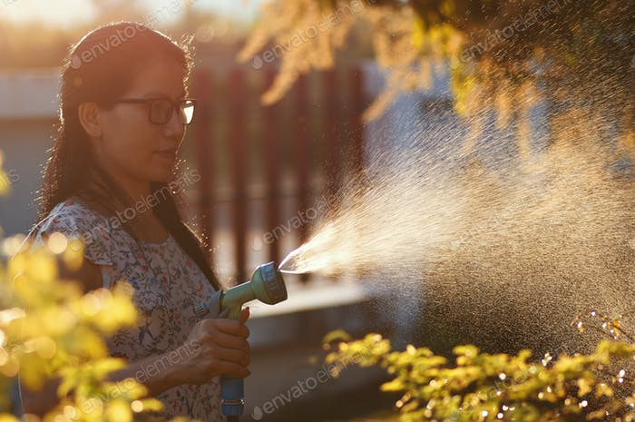 Women watering plants with sprinklers in a warm sunlight