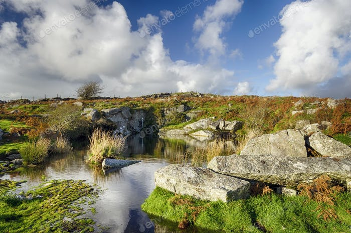 Old Quarry Workings on Bodmin Moor