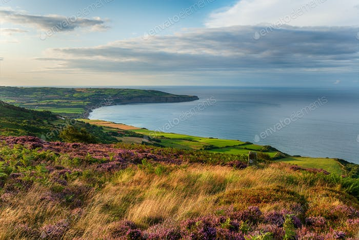 Looking out to Robin Hood's Bay from the hills above Ravenscar