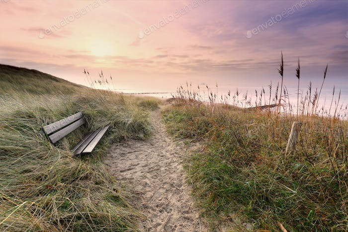 wooden bench by path to North sea coast