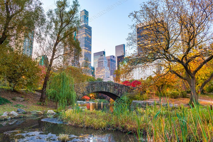 Central Park during autumn in New York City