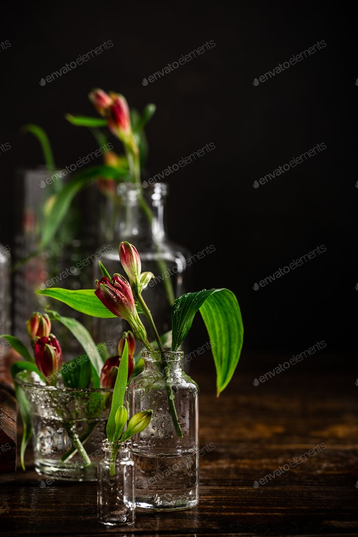 Red flowers in glass vases