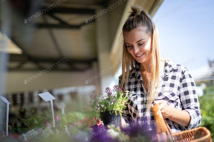 Der Kunde des Gartencenters wählt Pflanzen zum Kauf