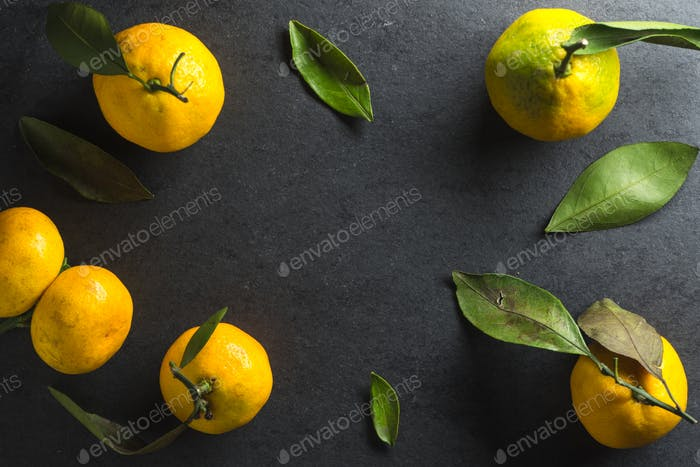 Frame of yellow mandarins with leaves on a gray background