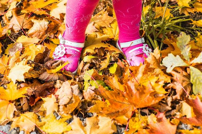 Nahaufnahme von Babyfüßen in Schuhen auf Herbstblättern