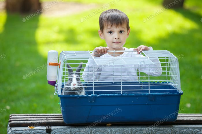 Preschool boy opening a cage with a pet rabbit in a park