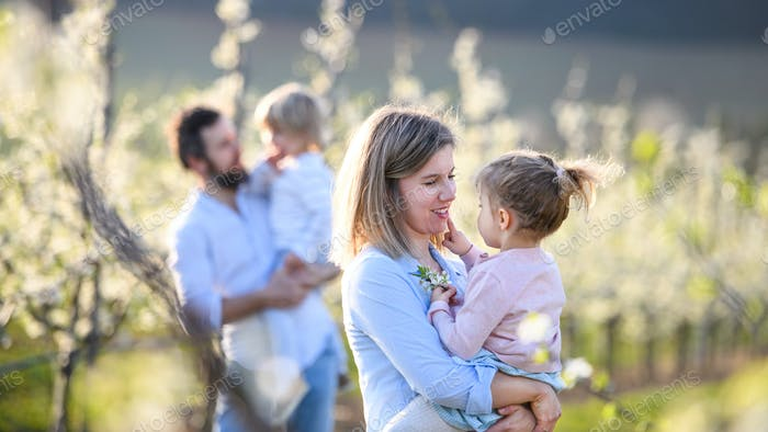 Family with two small children standing outdoors in orchard in spring