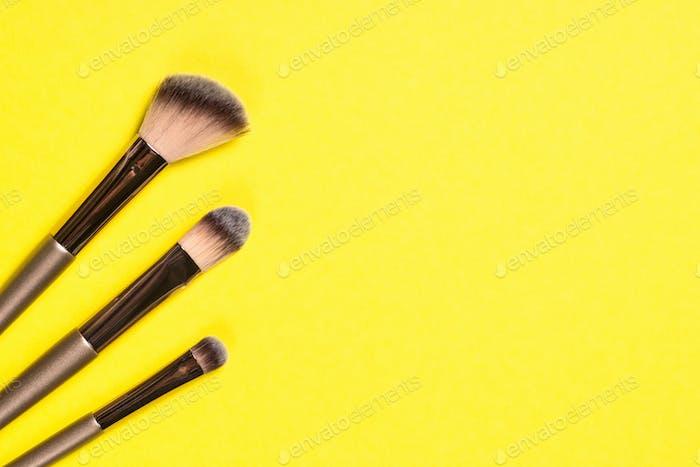 Makeup brushes for professional makeup