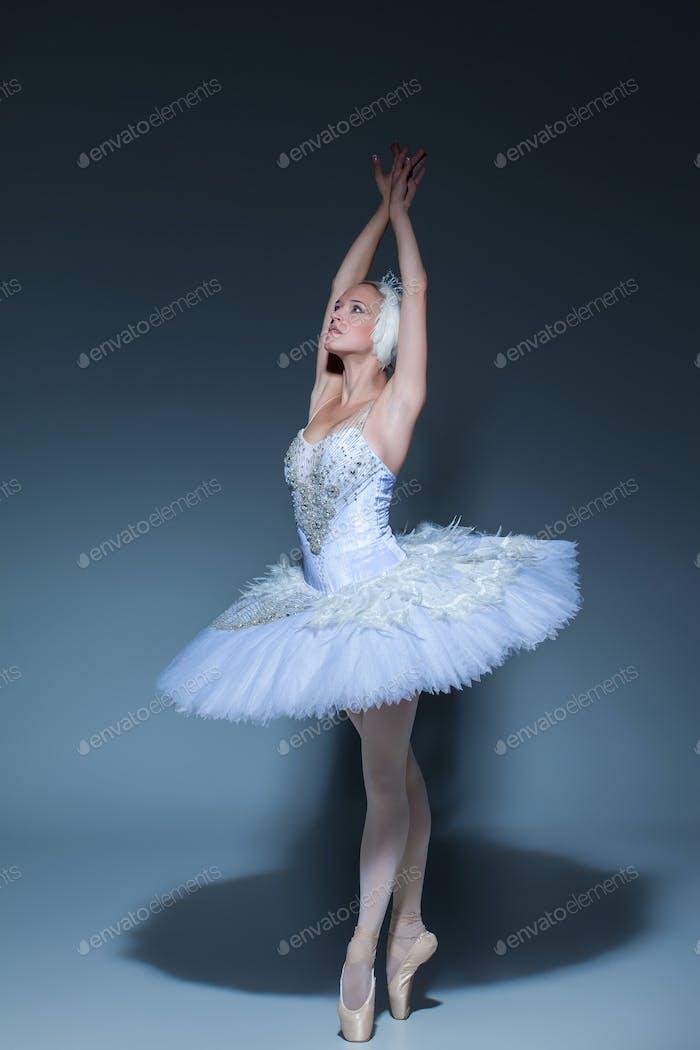 Portrait of the ballerina in ballet tatu on blue background
