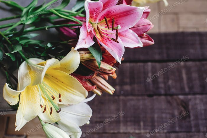 beautiful colorful lily flowers on wooden background