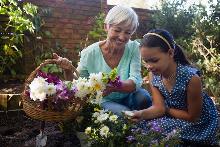 Lächelnde Senior Frau tragen Blumenkorb Blick auf Enkelin