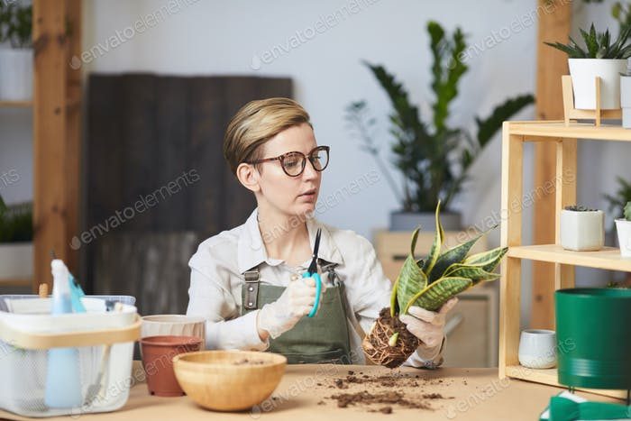 Young Woman Caring for Houseplants Indoors