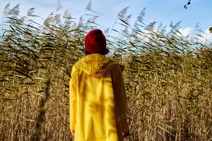 Back view of woman in bright yellow raincoat and red hat looks at reeds, unity with nature