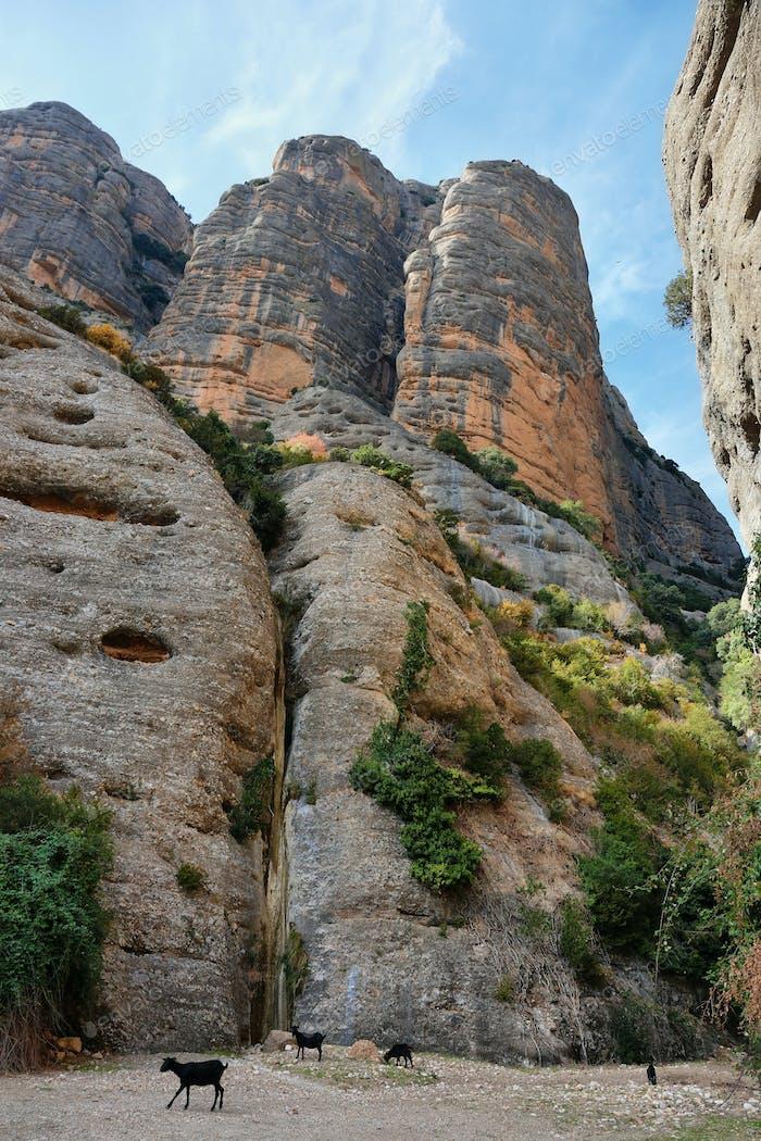 Rocky cliffs close to Vadiello reservoir in Guara Natural Park, Huesca, Spain