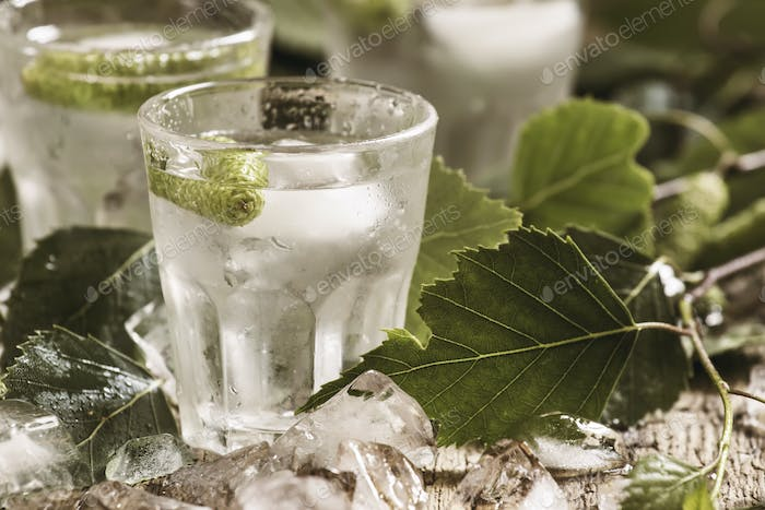 Cold Russian vodka on birch buds, crushed ice, birch leaves