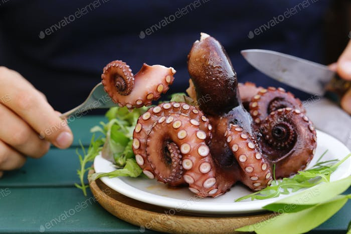 Natural Fresh Octopus