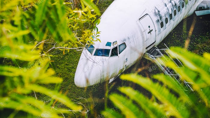 Abandoned aircraft between leaves, Bali, Indonesia