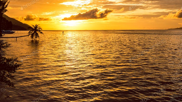 Stand up paddler SUP on Sunset, Kri Island. Raja Ampat, Indonesia, West Papua