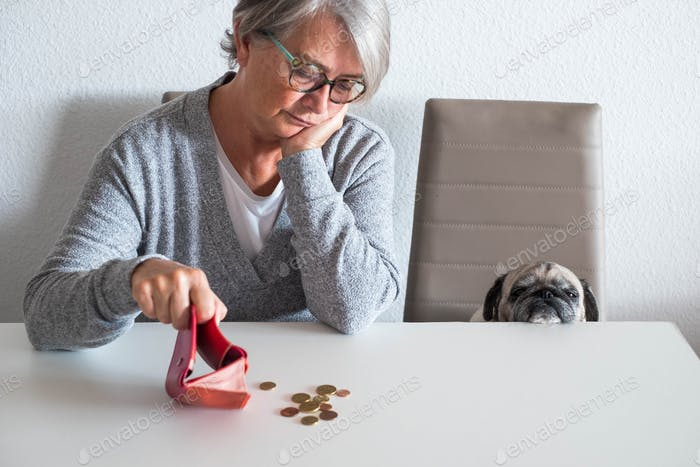 couple of mature woman and small pug counting money and how many she earning