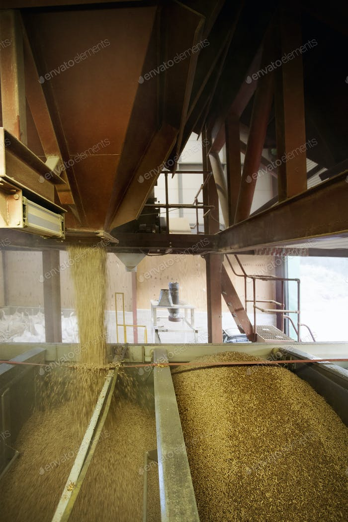 Biomass fuel producer, barn full of biomass fuel pellets.