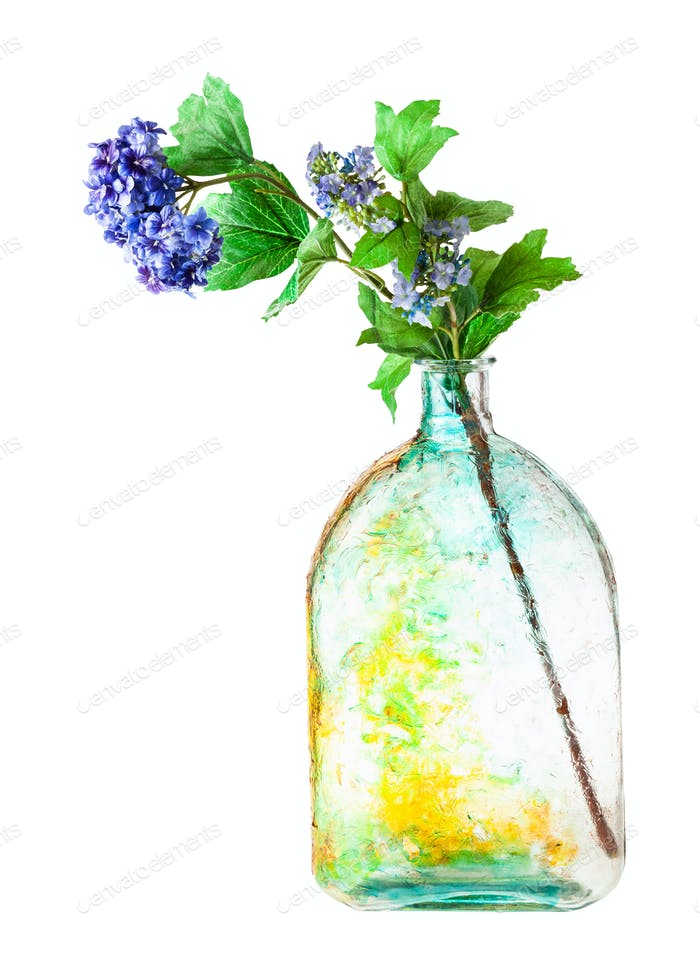 hortensia flowers in handpainted flask isolated