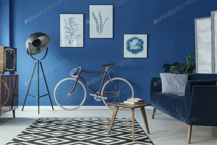 Bike in living room