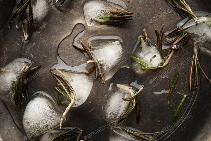 Ice cubes with rosemary on the metal plate top view