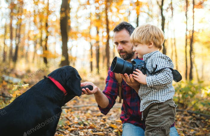 A mature father with a dog and a toddler son in an autumn forest.