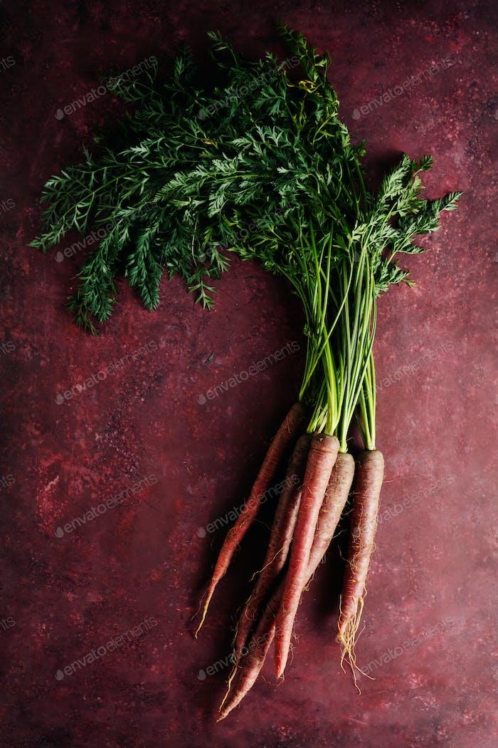 Bündel frische Bio-Karotten