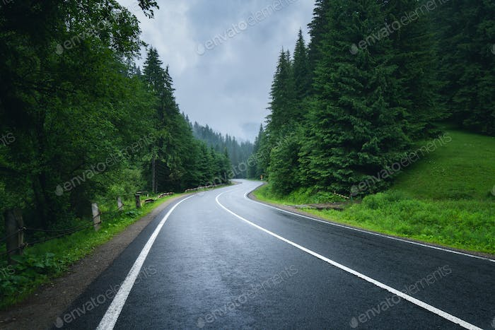 Road in foggy forest in rainy day in spring. Beautiful mountain