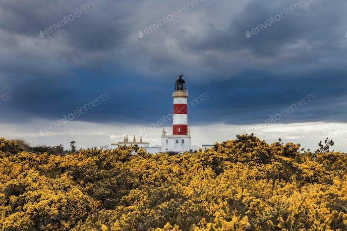 Punkt des Ayre Leuchtturms auf der Isle of Man