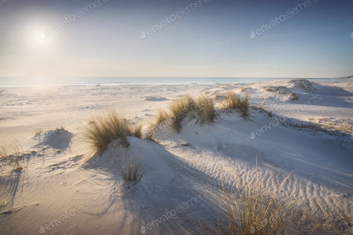 White sand beach and dunes. Vada Rosignano, Tuscany, Italy