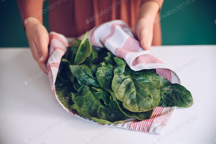 Woman holding spinach leaves in a towel