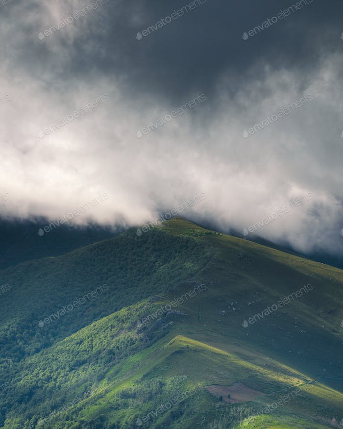 The highest peaks of the Sierra are hidden behind a layer of clouds