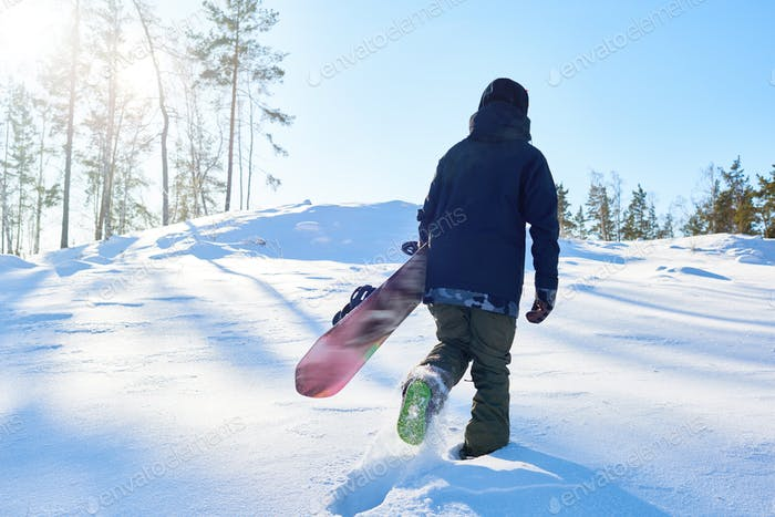 Snowboarder in the Woods