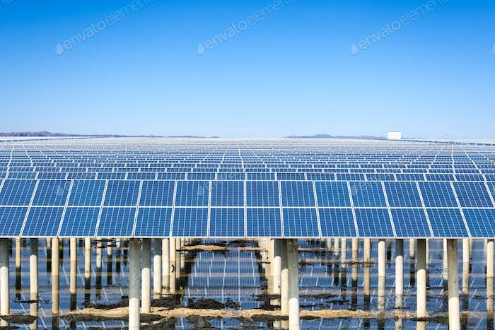 solar power plant under the blue sky
