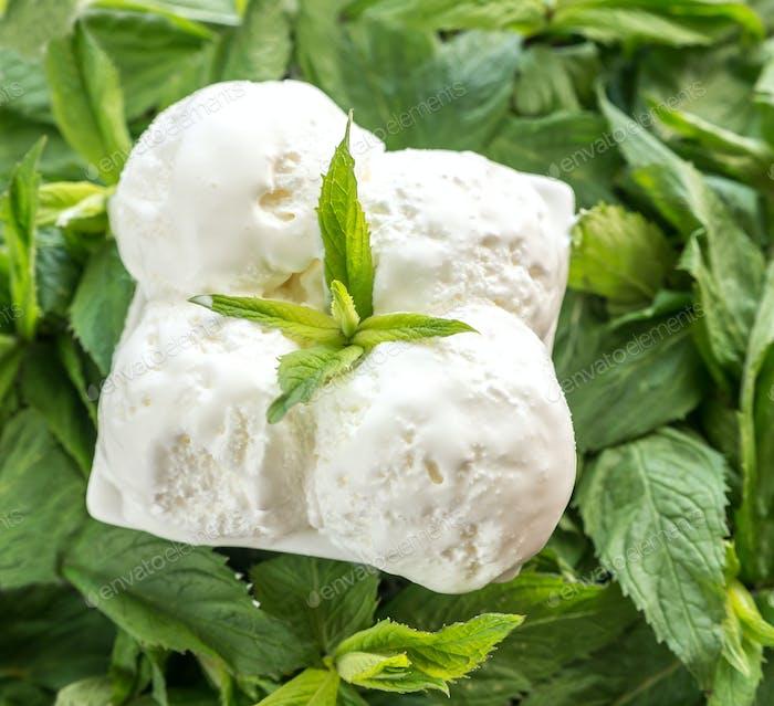 Vanilla ice cream in mint