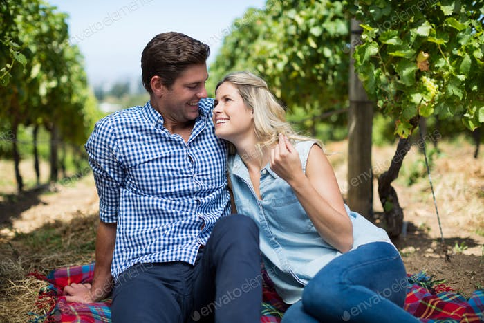Happy young looking at each other sitting at vineyard