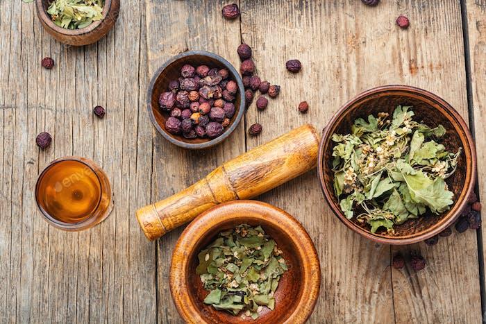 Dried crataegus in herbal medicine.