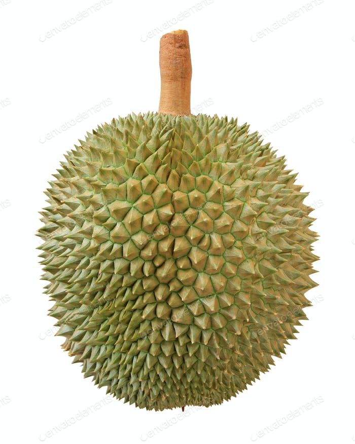 Closeup of durian fruit