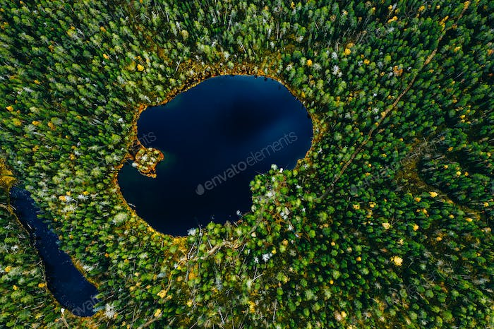 Aerial view of small blue lake in green pine tree forest in rural Finland.