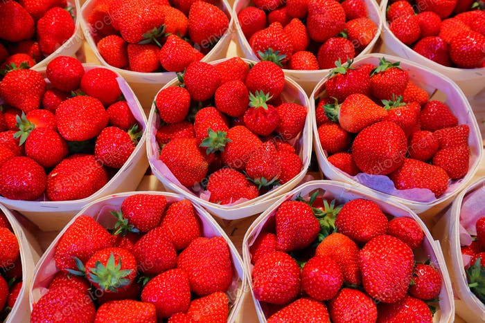 Fresh strawberries from the farm