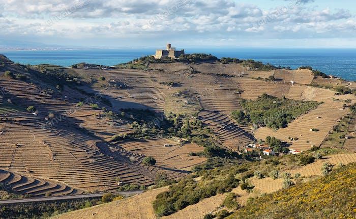 Fort Saint Elme, Pyrenees Orientales, Roussillon, France
