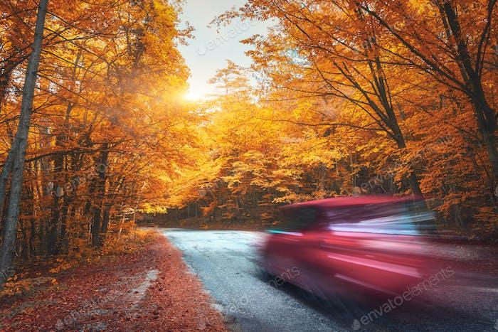 Verschwommenes Auto gehen Bergstraße im Herbstwald bei Sonnenuntergang