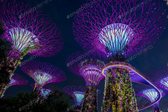 View of Garden by the bay at night - Singapore