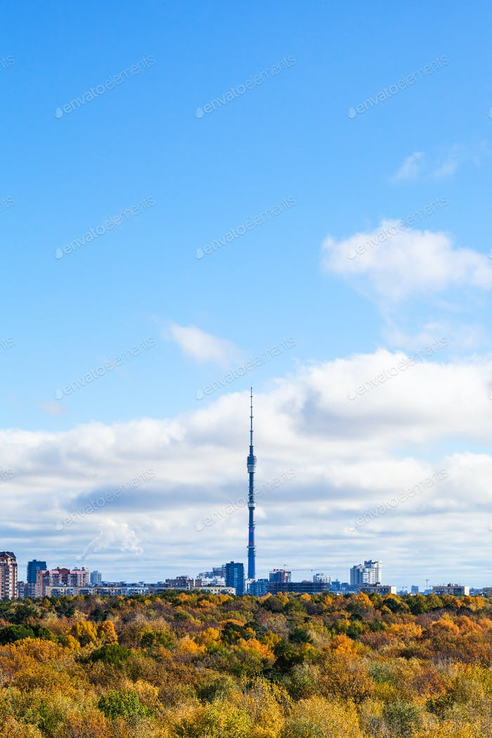 blue sky over autumn forest and city with tv tower
