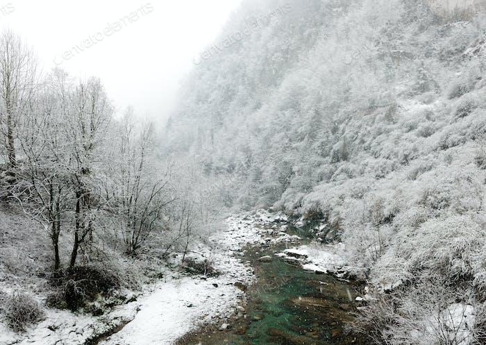 Horizontal de invierno